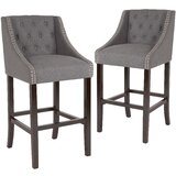 Michels Bar & Counter Stool (Set of 2) by Alcott Hill®