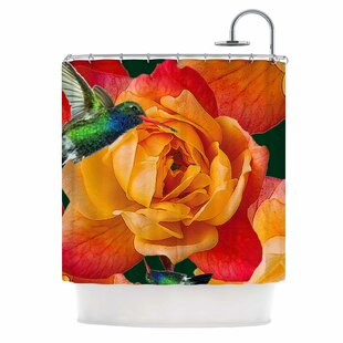 'Roses in Hummingbird' Nature Single Shower Curtain