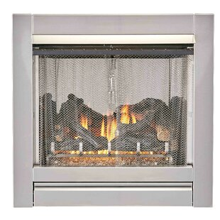 Bluegrass Living Outdoor Vent-Free Natural Gas Fireplace By Duluth Forge