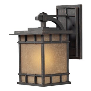 Top Darrens 1-Light Outdoor Wall Lantern By Darby Home Co