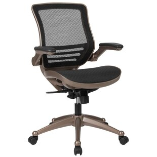 Ebern Designs Mignone Mid-Back Transparent Swivel Mesh Office Chair