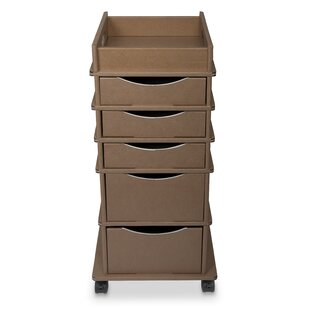 10 Drawer Rolling Storage Cart Wayfair