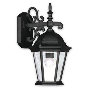 Buy luxury Busse 1-Light Outdoor Wall Lantern By Darby Home Co