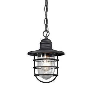 Order Finnigan 1-Light Outdoor Hanging Lantern By Beachcrest Home