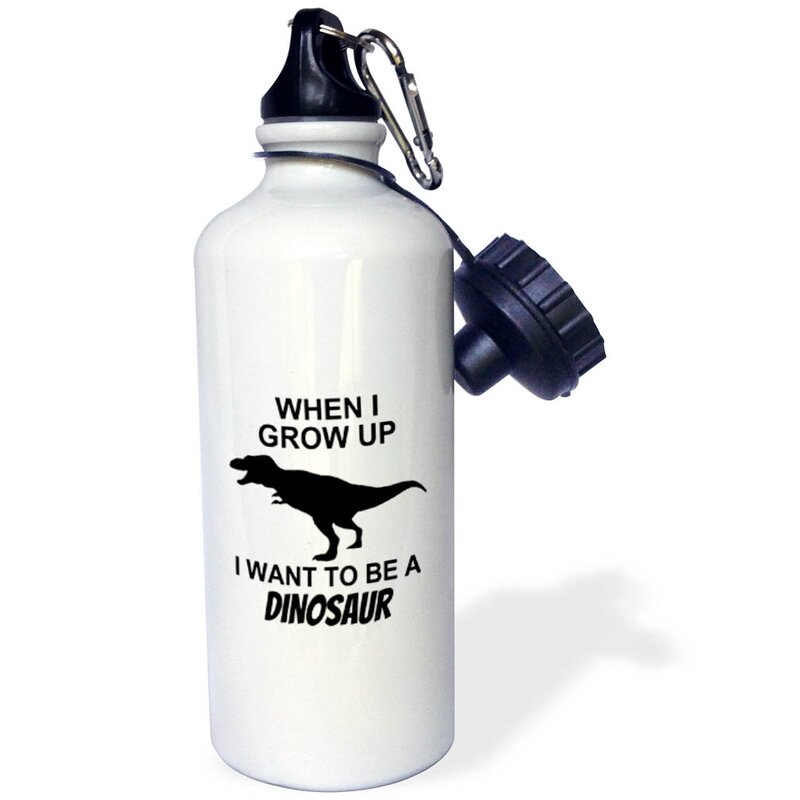 3drose When I Grow Pp I Want To Be A Dinosaur 21 Oz Stainless Steel Water Bottle Wayfair