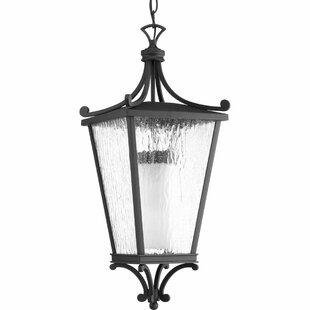Fleur De Lis Living Alexandra 1-Light Hanging Lantern