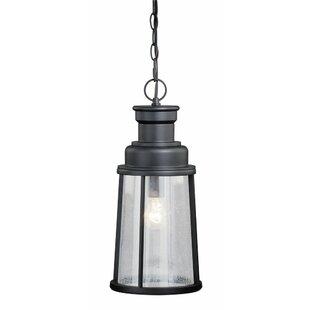Trent Austin Design Cascades 1-Light Outdoor Pendant