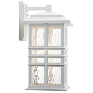 Barton 1-Light Outdoor Wall Lantern
