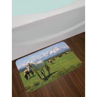 National Parks Equestrian Design Snowy Idyllic Mountain Peaks Arabian Horse Art Prints Non-Slip Plush Bath Rug