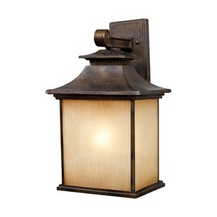 Lynwood 1-Light Outdoor Wall Lantern