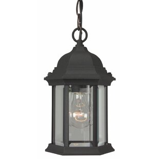 Shopping for Oakhill 1-Light Hanging Lantern By Charlton Home