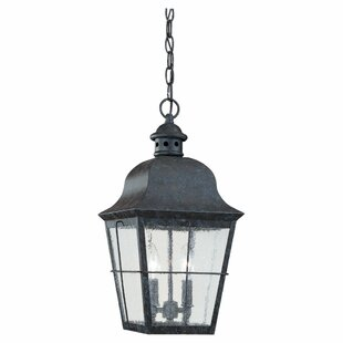 Reviews Chancellroy 2-Light Outdoor Hanging Lantern By Loon Peak