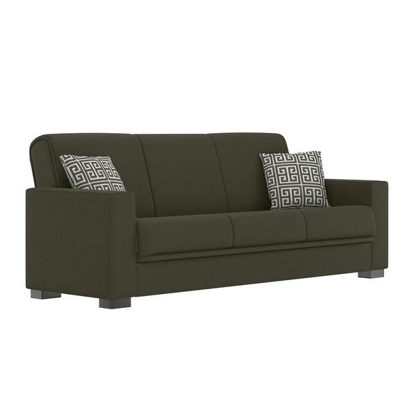 Outstanding Gabby Sleeper Sofa Wayfair Bralicious Painted Fabric Chair Ideas Braliciousco