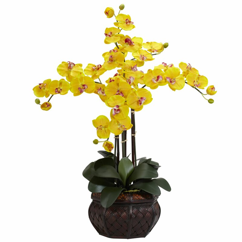 Nearly natural phalaenopsis with decorative vase silk flower phalaenopsis with decorative vase silk flower arrangement in yellow mightylinksfo