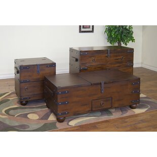 Loon Peak Vista Trunk Console Table