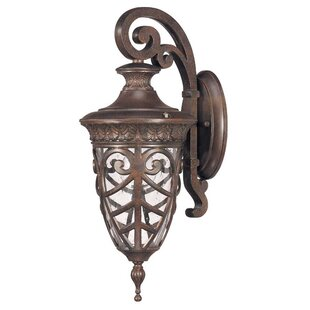 Great Price Dunamoy Traditional 1-Light Outdoor Wall Lantern By Astoria Grand