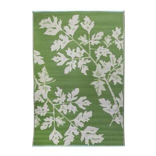 Premier Home Hand-Woven Green/White Indoor/Outdoor Area Rug