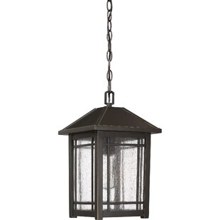 Beams 1-Light Outdoor Hanging Lantern by Darby Home Co
