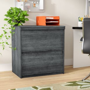 Look for Elkin 2-Drawer File Cabinet by Wrought Studio