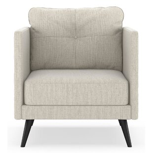 Schiavone Satin Weave Armchair by Orren Ellis