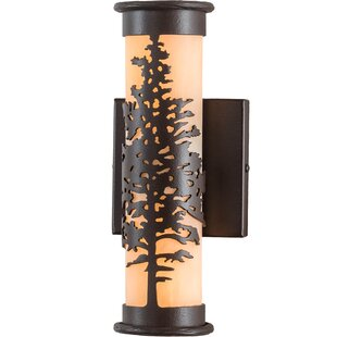 Comparison Wylie Outdoor Sconce By Loon Peak
