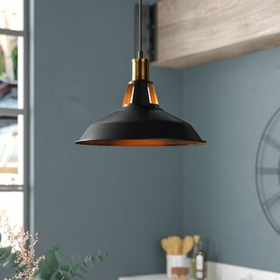 Williston Forge Newhaven 1-Light LED Dome Pendant