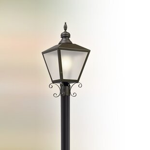 Sybil Outdoor 1-Light LED Lantern Head by Darby Home Co