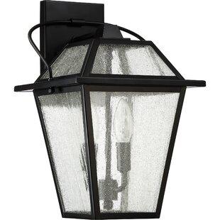 Darby Home Co Beardsley 2-Light Outdoor Wall Lantern