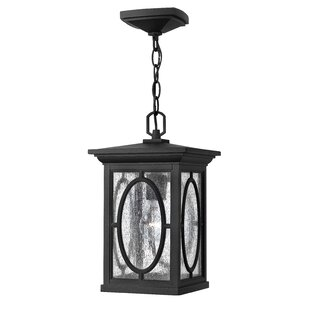 Mikell 1-Light Outdoor Hanging Lantern