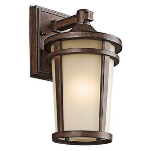 Harvey 1-Light Outdoor Wall Lantern