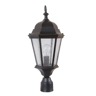 Check Prices Lorie 1-Light Post Lantern By Darby Home Co