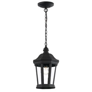 Compare Windridge 1-Light Outdoor Hanging Lantern By Darby Home Co
