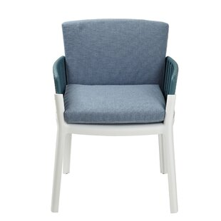 Vaughn Arm Chair (Set of 2) Brayden Studio