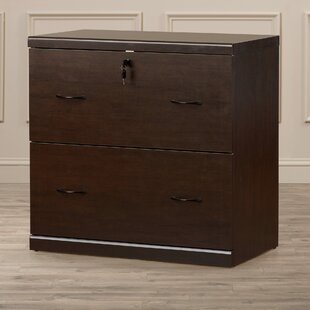 Otterbein 2 Drawer File Cabinet by Charlton Home Discount