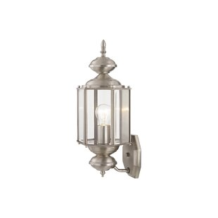 Etelvina 1-Light Outdoor Sconce