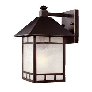 San Pablo Rustic 1-Light Outdoor Wall Lantern