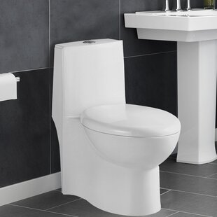 Aqualife Corp Colorado 1.28 GPF Elongated One-Piece Toilet