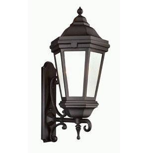 Shopping for Theodore 3-Light Outdoor Sconce By Darby Home Co