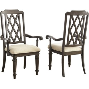 Darby Home Co Elverson Arm Chair (Set of 2)