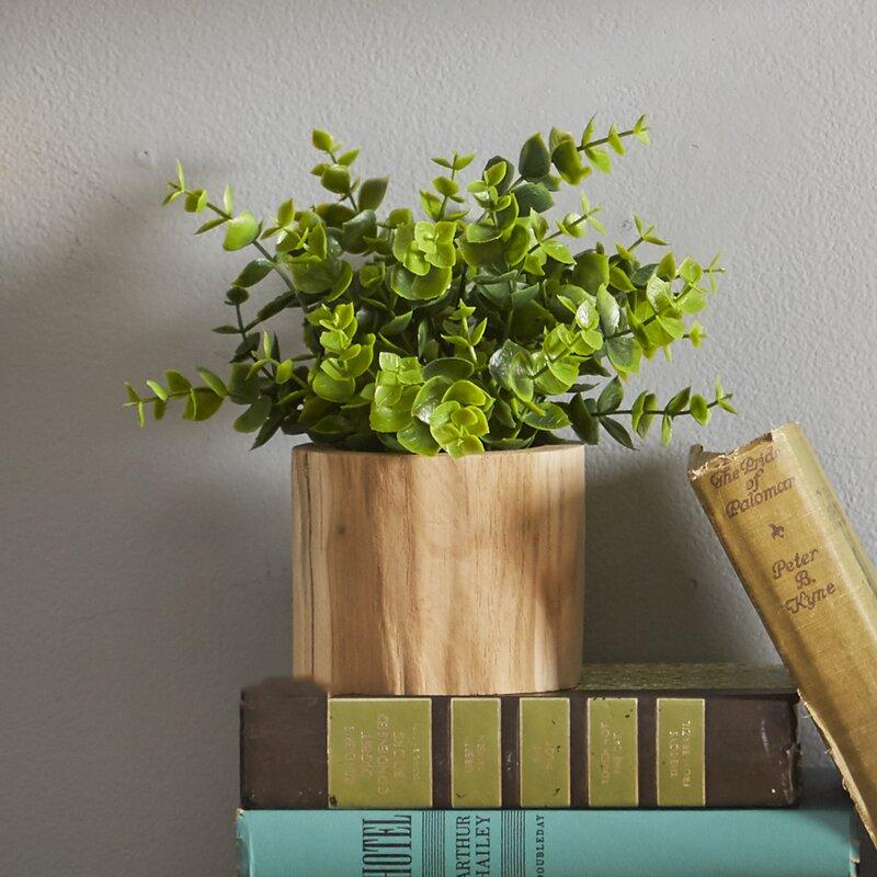 Three Posts Faux Naturalist Eucalyptus Bonsai Plant In Wood Pot Reviews Wayfair