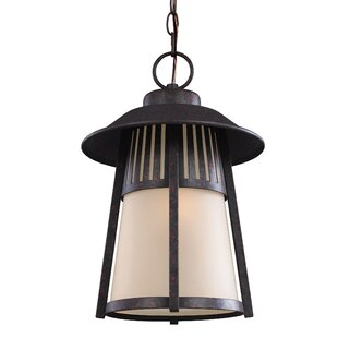 Darby Home Co Burkettsville 1-Light Outdoor Pendant