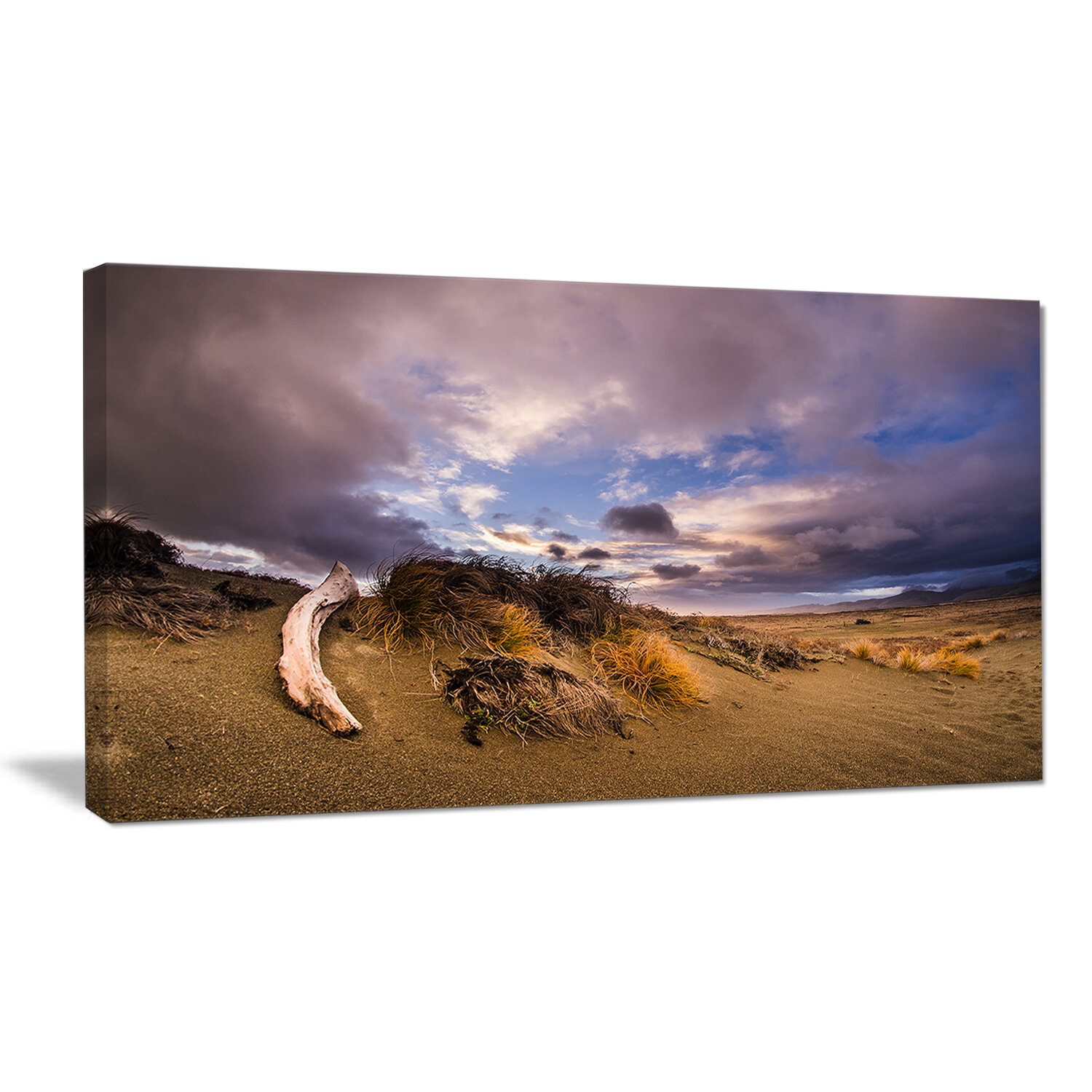Designart Old Wooden Trunk In The Sunset Photographic Print On Wrapped Canvas Wayfair