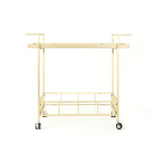 Efird Outdoor Modern Bar Serving Cart