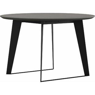 Soleil Stone/Concrete Dining Table by Orren Ellis