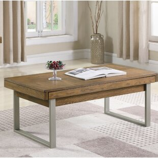 Ann Coffee Table with Storage Foundry Select