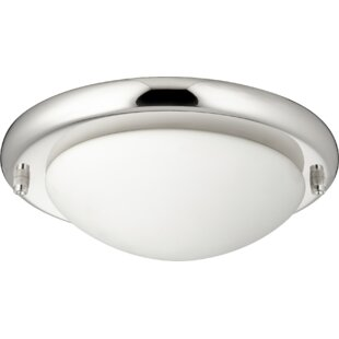 Affordable Price Dome 2-Light Globe Ceiling Fan Light Kit By Ebern Designs