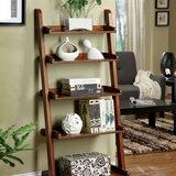 https://secure.img1-fg.wfcdn.com/im/88436020/resize-h160-w160%5Ecompr-r85/7734/77342961/Auguste+Ladder+Bookcase.jpg