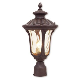 Gurnee Outdoor 1-Light Metal Lantern Head by Three Posts