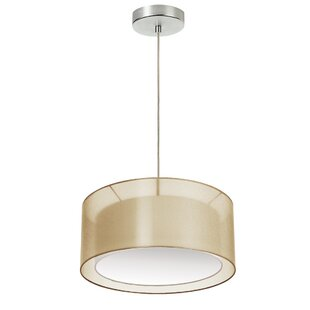 Orren Ellis Epicurus 2-Light Pendant