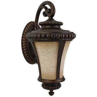 Guide to buy Oakhill Bronze 3-Light Outdoor Wall Lantern By Charlton Home